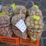 patate_biologiche_azienda_calizzano