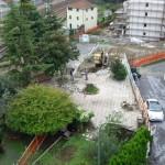 Varazze_abbattimento verde pubblico in zona Rio Cucco
