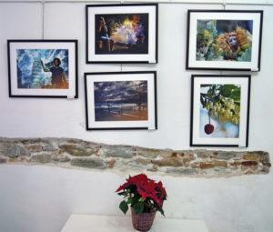 varazze-gallery-malocello-mostra-collettiva-fccv-29-11-2016